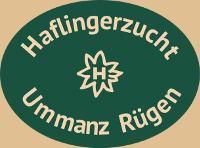 Haflingerzucht Ummanz Rügen